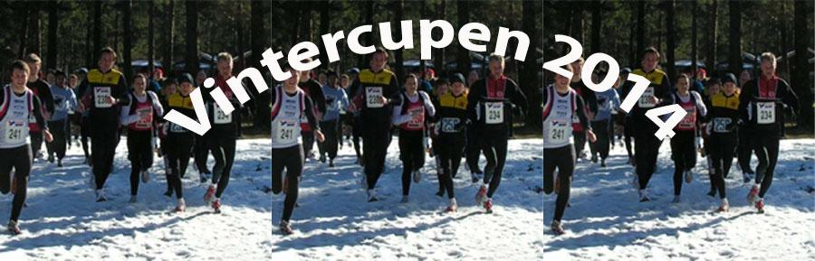 Vintercupen